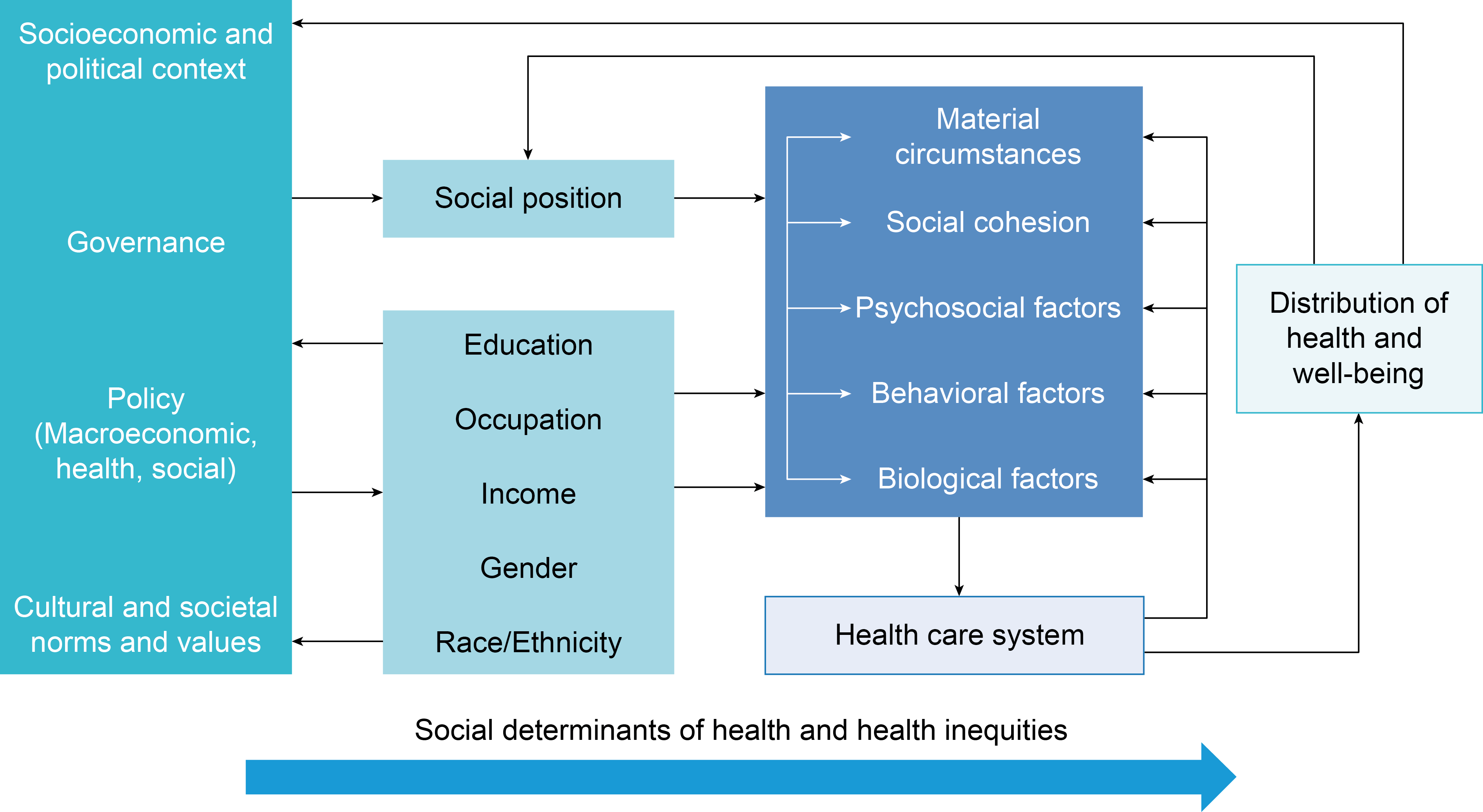 Source: Solar O, Irwin A. A conceptual framework for action on the social  determinants of health. Geneva: World Health Organization; 2007. (