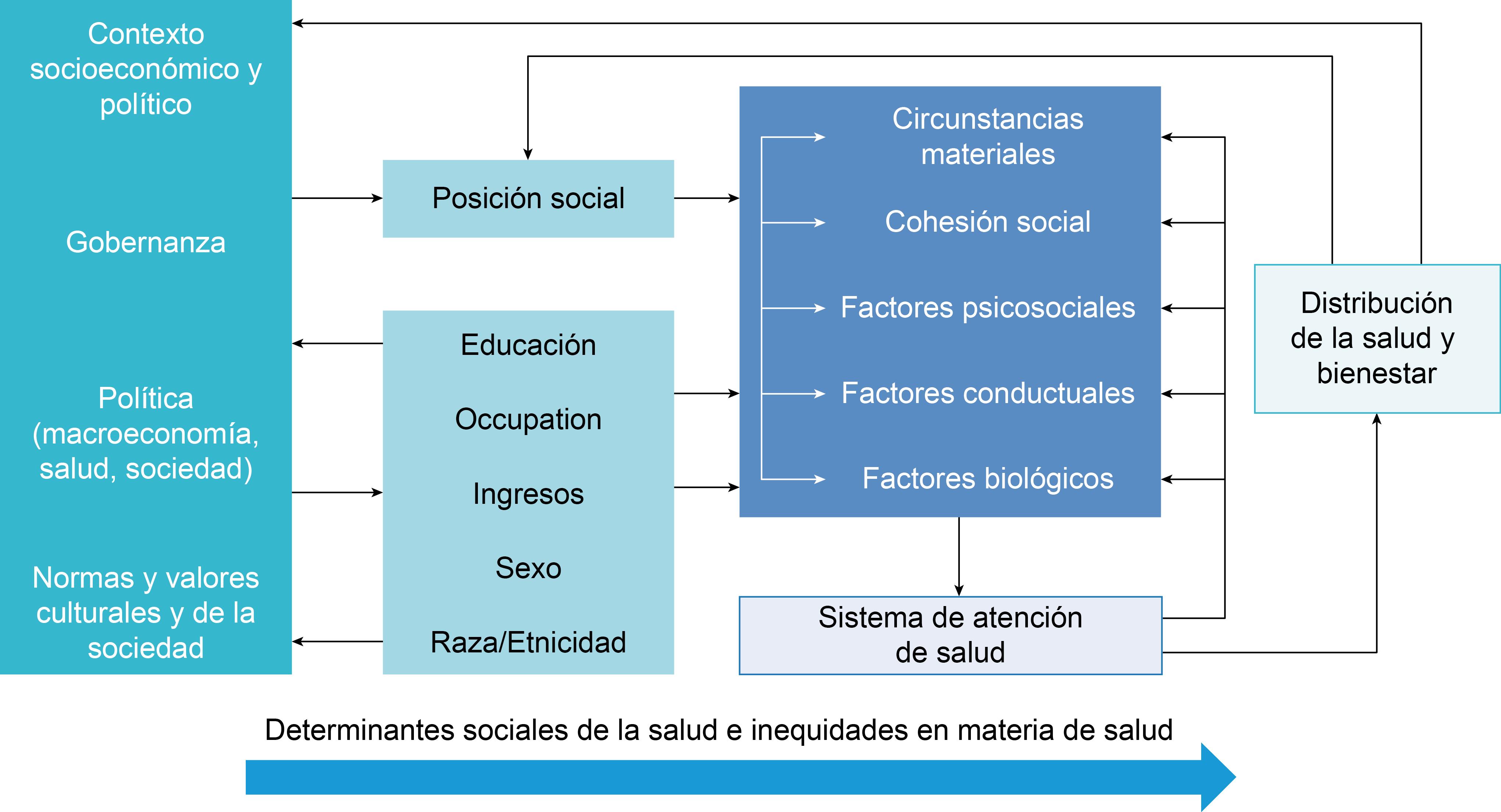 Determinantes Sociales De La Salud En La Región De Las Américas