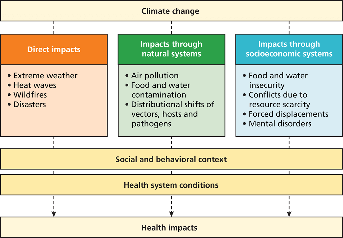 how climate change affects human health Climate change affects the social and environmental determinants of health – clean air, safe drinking water, sufficient food and secure shelter between 2030 and 2050, climate change is expected to cause approximately 250 000 additional deaths per year, from malnutrition, malaria, diarrhoea and.