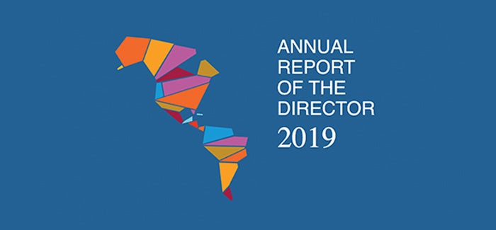 Annual Report of the Director 2019