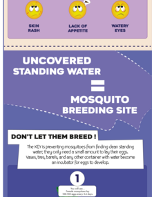 Infographic. Fight the bite: Destroy mosquito breeding sites - Mosquito bites can transmit serious diseases (mobile version)