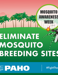 Postcard for social media - Eliminate mosquito breeding sites