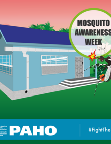 Postcard for social media - Mosquito netting