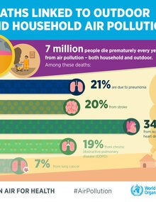 Infographic. Deaths linked to outdoor and household air pollution; 2019