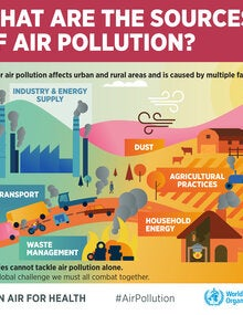 Infographic. What are the sources of air pollution?; 2019