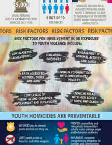 Infographic on homicide among youth in the Americas.