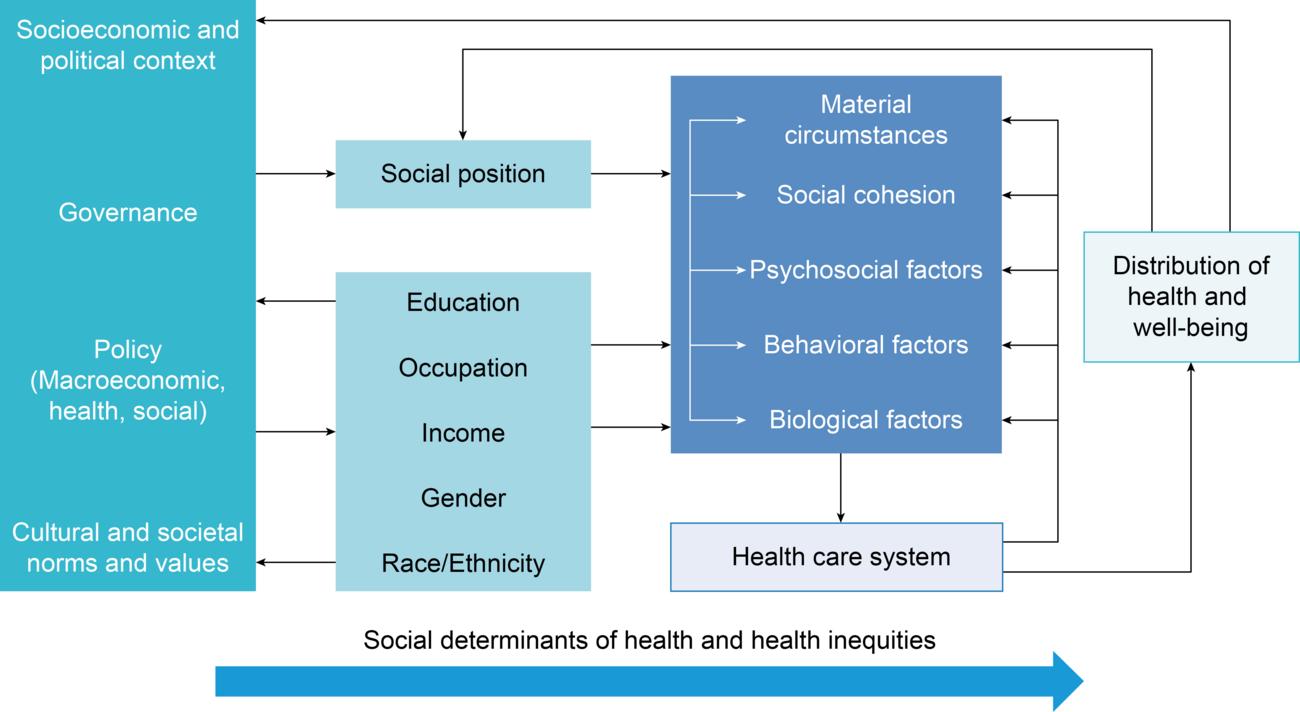Social Determinants Of Health Paho Who Pan American Health Organization