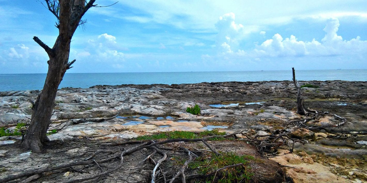 Devastation due to climate change