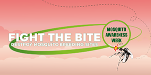 Caribbean Mosquito Awareness Week 2020