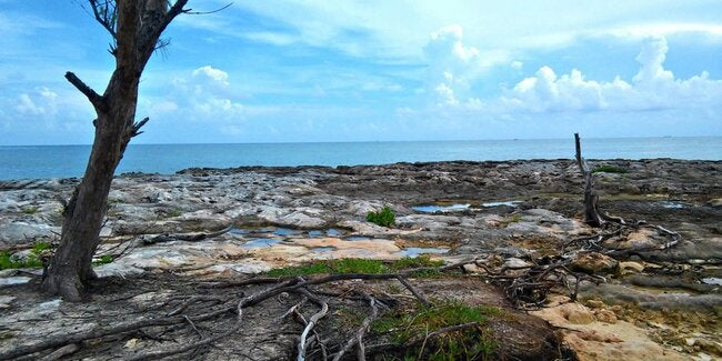 New CARICOM-EU project will tackle climate change and its health impacts in the Caribbean thumbnail